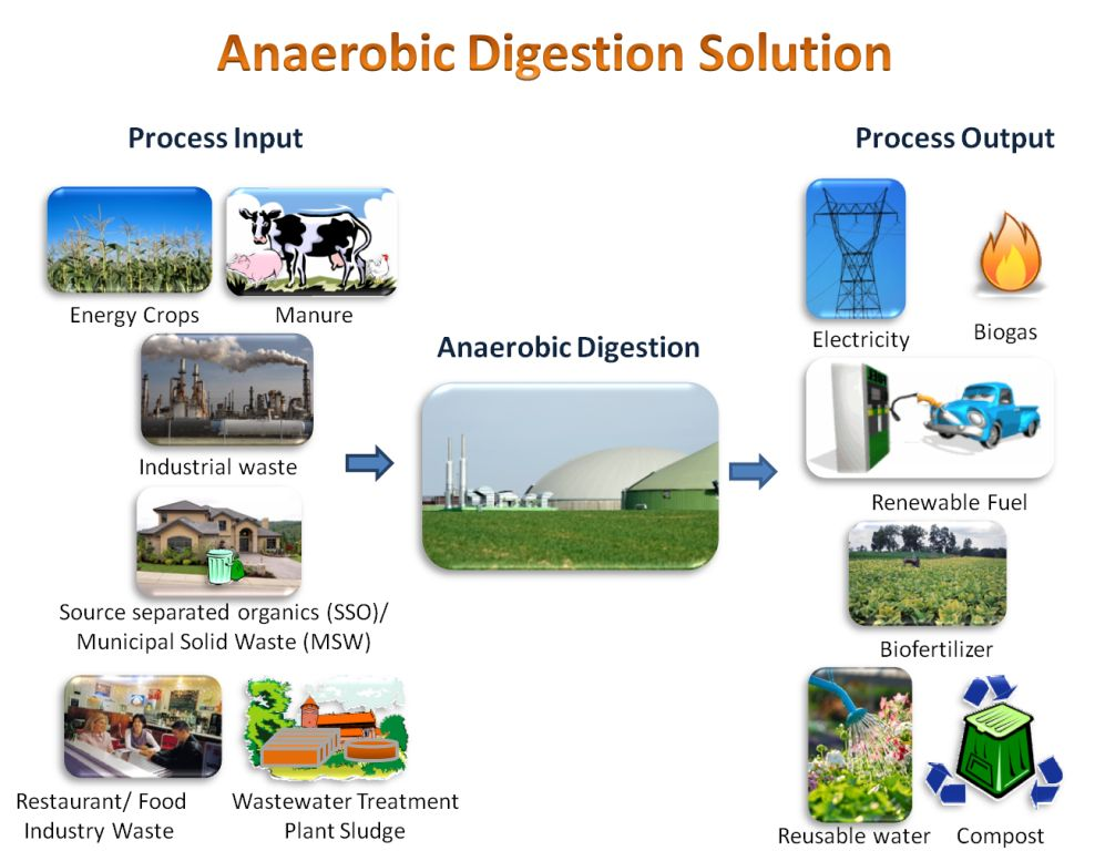 anaerobic digestion on biodegradable waste for Anaerobic digestion of waste bioplastic depending on the rate of bioplastic fermentation in a biogas digester, biodegradable bioplastics can be digested to assist in producing methane if all plastic packaging used for food was biodegradable, it would hold big advantages for food waste anaerobic digestion plant operators.